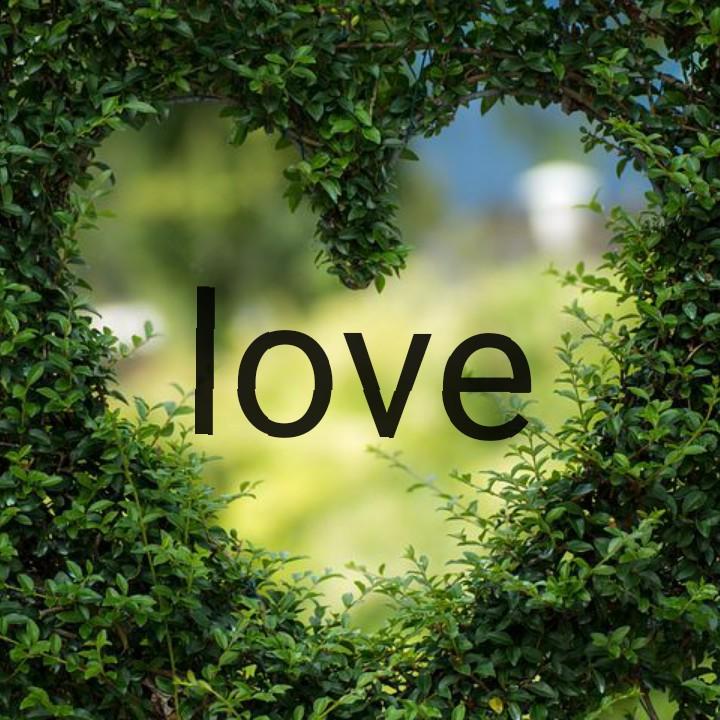 🙌শুভকামনা - love - ShareChat