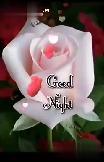 good night all frnds - ShareChat