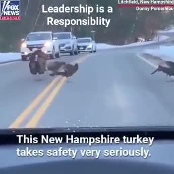 😲వింతలు -విశేషాలు - FOX NEWS Litchfield , New Hampshire Donny Pomerleau Leadership is a Responsiblity / / FOX VNEWS Litchfield , New Hampshire Donny Pomerieau Leadership is a Responsiblity - ShareChat