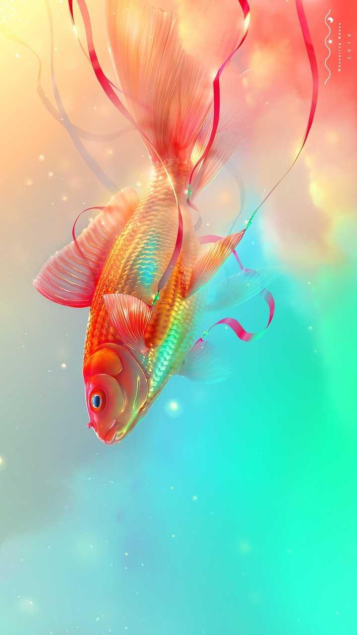 Fish - 2016 - ShareChat