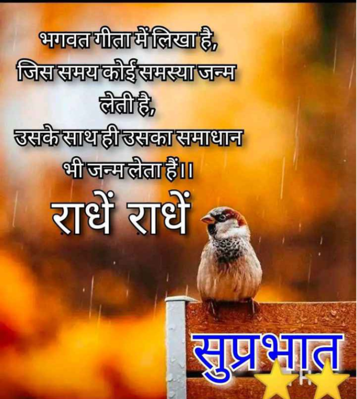🌸 बोलो राधे राधे - भगवत गीता में लिखा है , जिस समय कोई समस्या जन्म लेती है , उसके साथही उसका समाधान भी जन्मलेता हैं । राधे राधे सुप्रभात - ShareChat