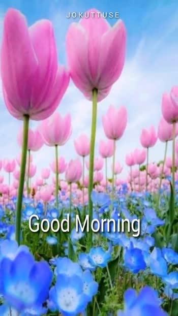 🌞 ഗുഡ് മോണിംഗ് - JOKUTTUSE Good Morning JOKUTTUSE Good Morning - ShareChat