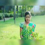 செம்பருத்தி - TNO NE TNZone Nel - ShareChat