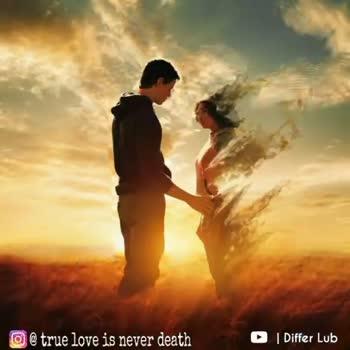 💕 காதல் ஸ்டேட்டஸ் - @ @ true love is never death Differ Lub @ @ true love is never death D Differ Lub - ShareChat