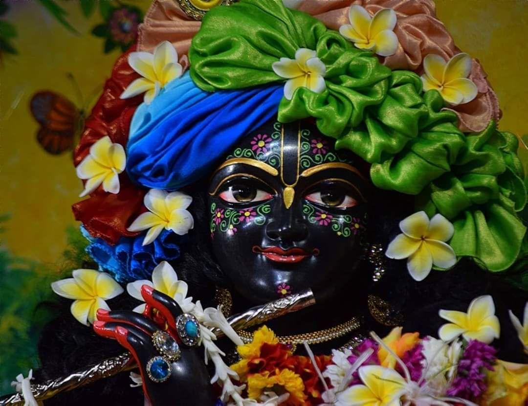 🙏 જય શ્રી કૃષ્ણ - SES - ShareChat