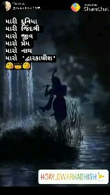 royal bharvad👑 - Posted On : પોસ્ટ કરનાર : @ mayadesai1905 Sharechat મારી દુનિયા મારી જિંદગી મારો જીવ મારો પ્રેમ મારો નાથ મારો દ્વારકાધીશ | # JAY _ DWARKADHISH » પોસ્ટ કરનાર : @ mayadesai1905 Posted on : ShareChat મારી દુનિયા મારી જિંદગી મારો જીવ મારો પ્રેમ મારો નાથી મારો દ્વારકાધીશ | # JAY _ DWARKADHISH » - ShareChat