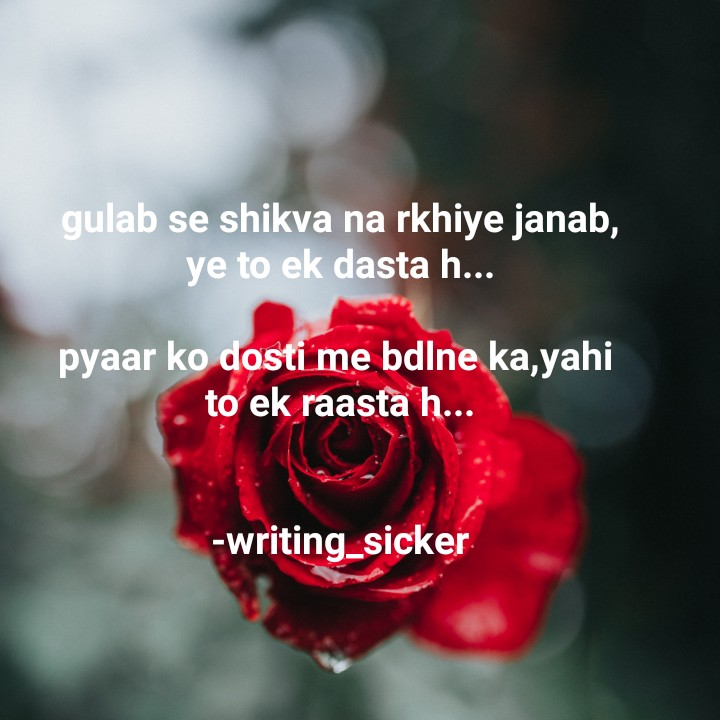 friendship🌷🌷🌷 - gulab se shikva na rkhiye janab , ye to ek dasta h . . . pyaar ko dosti me bdlne ka , yahi to ek raasta h . . . - writing _ sicker - ShareChat