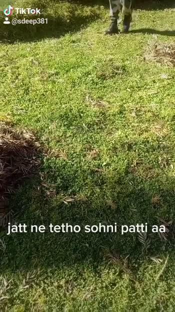❤️ ਫੌਜੀ ਦੀਆਂ ਦਿਲ ਦੀਆਂ ਗੱਲਾਂ - ShareChat