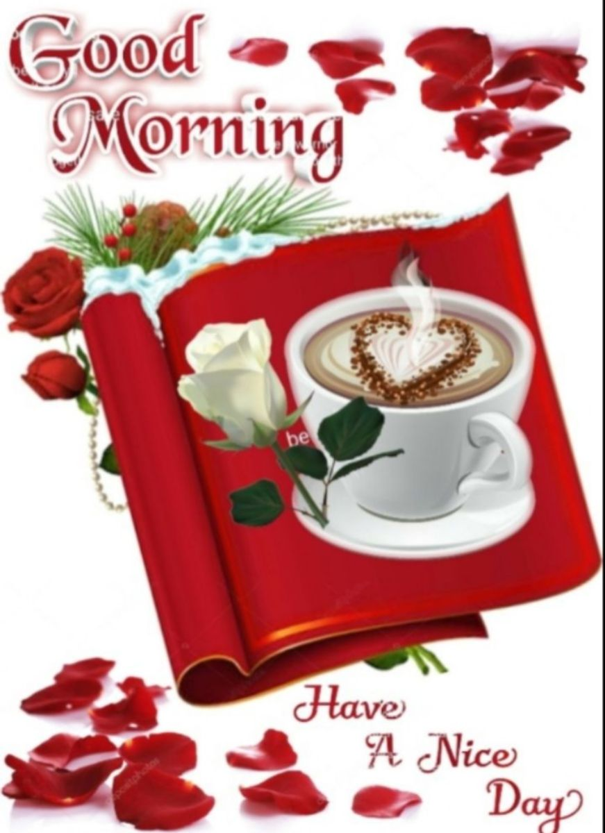 🌞 Good Morning🌞 - Good or Morning be Have A Nice Day - ShareChat