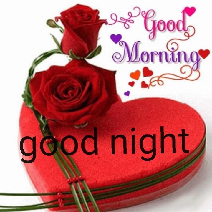 📹लहरदार वीडियो - 2 Good Morning good night - ShareChat