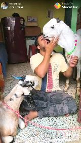 Eid Selfie 🤳 - पोस्ट करने वाले : @ harshrans Posted On ShareChat - ShareChat