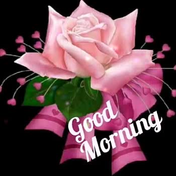 Good morning 🍫 - W idodos . org - ShareChat