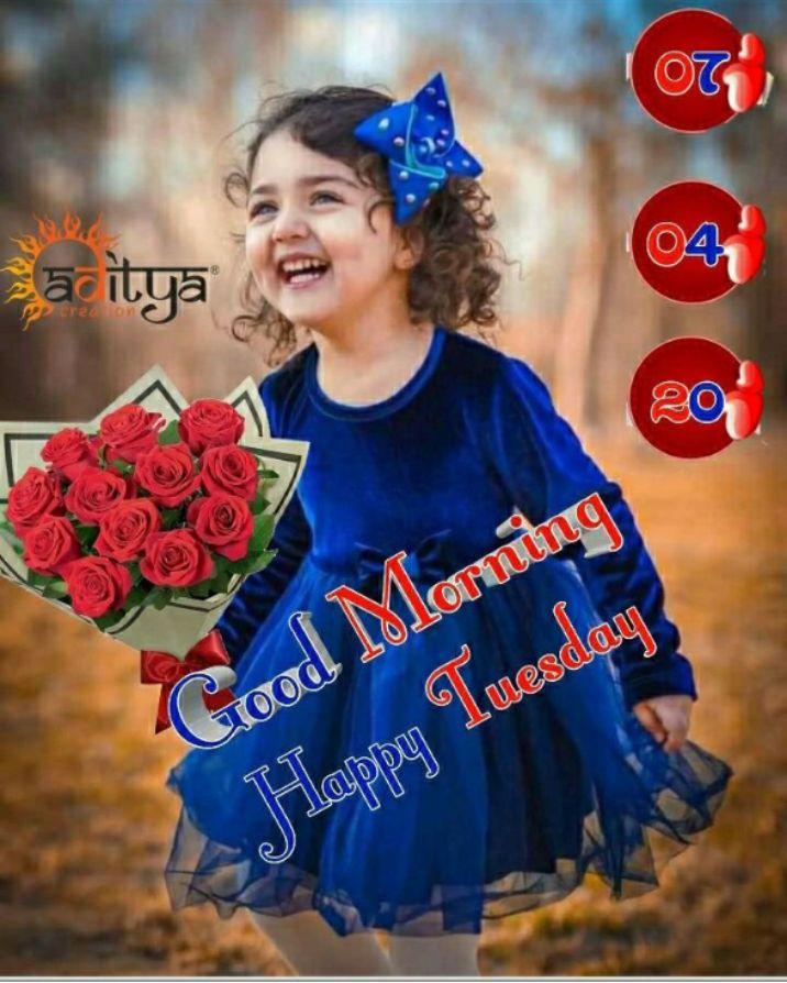 🌅 ਗੁੱਡ ਮੋਰਨਿੰਗ - sācitya e credor Good Morning Happy Tuesday - ShareChat