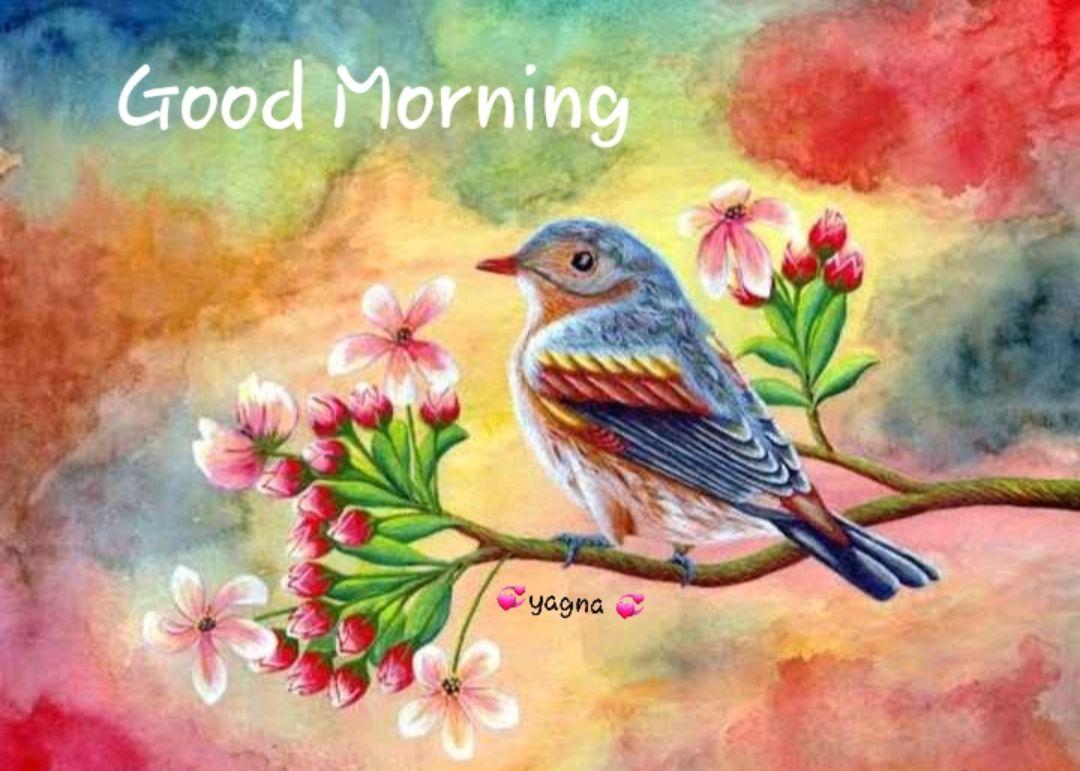 🌅 Good Morning - Good Morning yagna - ShareChat