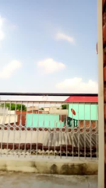 🏘️मेरी छत की वीडियो - ShareChat