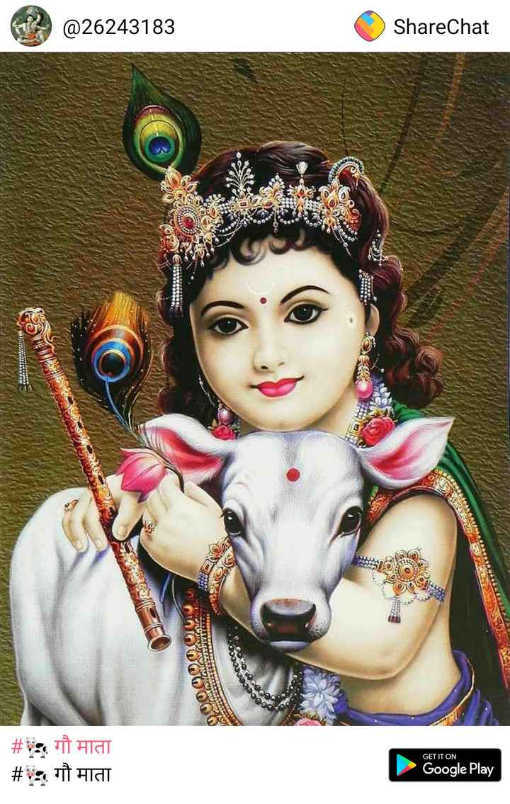 📸 30 Second स्टोरी - 2 @ 26243183 ShareChat ) | # गौ माता # : गौ माता GET IT ON Google Play - ShareChat