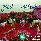jai shree krishna - Good cfipindia Marning Download the app - ShareChat