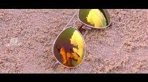இனிய பிறந்தநாள் வாழ்த்துக்கள் நயன்தாரா - ShareChat