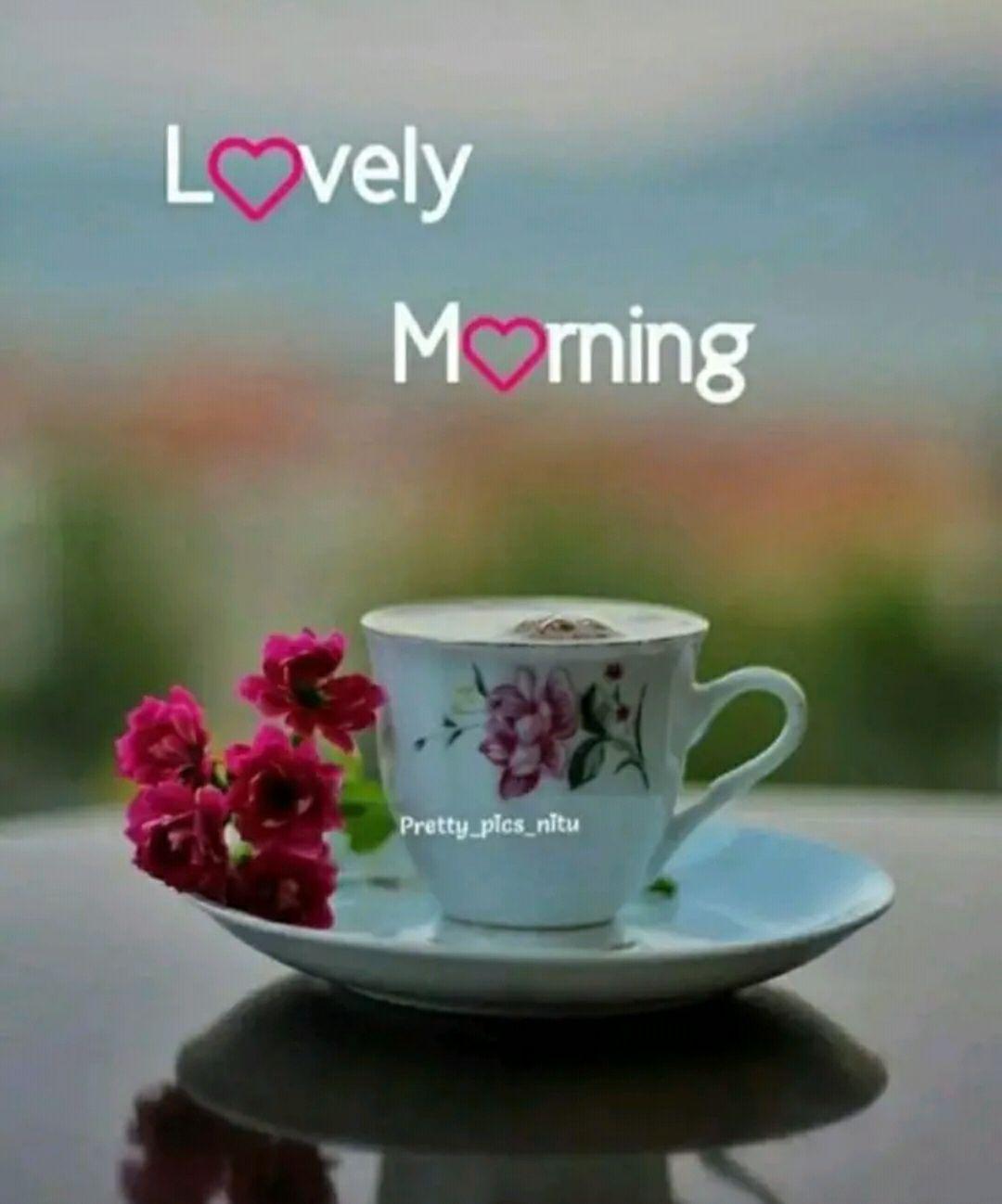 🌞காலை வணக்கம் - Lovely Morning Pretty _ plos _ nitu - ShareChat