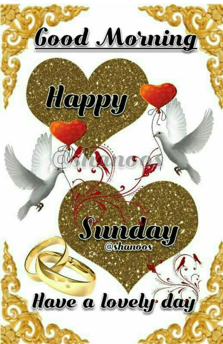 Happy Sunday Image Vp Sharechat Funny Romantic Videos