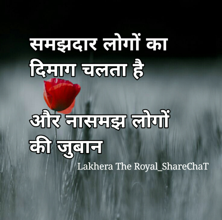 👌 अच्छी सोच👍 - समझदार लोगों का दिमाग चलता है और नासमझ लोगों की जुबान Lakhera The Royal _ ShareChat - ShareChat