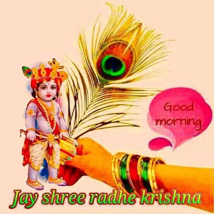 🌅 Good Morning - Good morning Jay shree radhe krishna - ShareChat