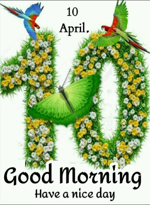 🌷शुभ शुक्रवार - 10 April , Good Morning Have a nice day - ShareChat