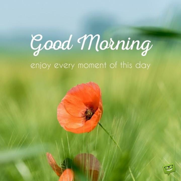 🌞 ഗുഡ് മോണിംഗ് - Good Morning enjoy every moment of this day - ShareChat