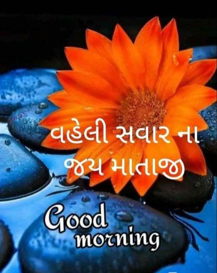 🌅 Good Morning - વહેલી સવાર ના જય માતાજી Good morning - ShareChat