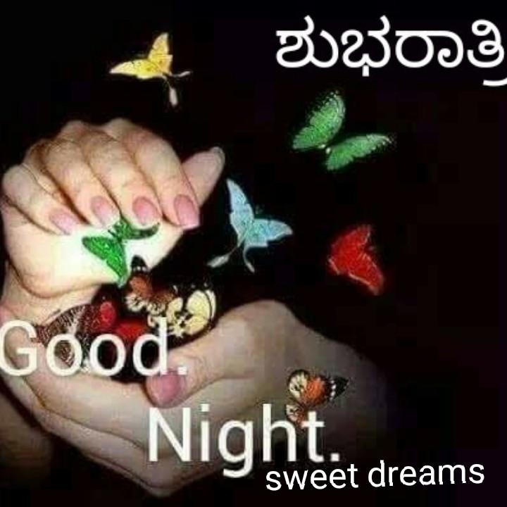 🌃ಶುಭ ರಾತ್ರಿ - ಶುಭರಾತ್ರಿ Good Nighiteet dreams sweet dreams - ShareChat