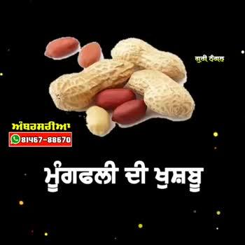 🔥 ਲੋਹੜੀ ਦੀਆਂ ਮੁਬਾਰਕਾਂ 🔥 - ShareChat