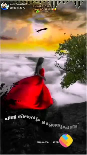 🎶 താരാട്ട് പാട്ടുകൾ - ShareChat