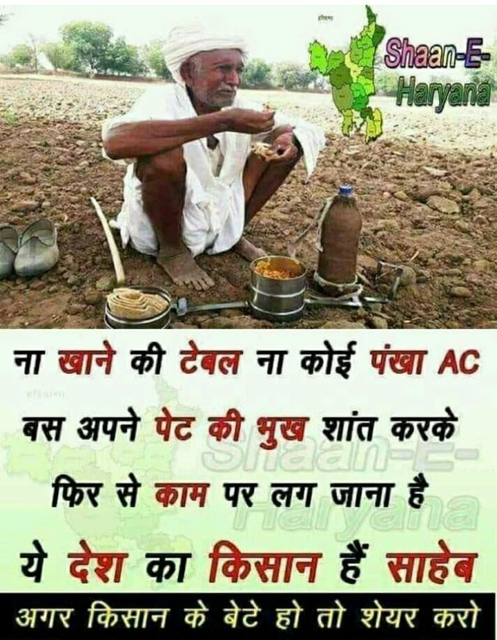 धरती पुत्र - Shaan - E Haryana ना खाने की देवल ना कोई पंखा AC | बस अपने पेट की भुख शांत करके फिर से काम पर लग जाना है । | ये देश का किसान हैं साहेब अगर किसान के बेटे हो तो शेयर करो । - ShareChat