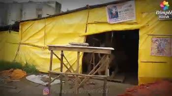 ganapati bappa moraya - ShareChat