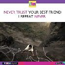 dua me yaad rakhna - RVC ) NEVER TRUST YOUR BEST FRIEND I REPEAT NEVER FCOV RVCJ Media RVC ) NEVER TRUST YOUR BEST FRIEND I REPEAT NEVER GROJ Media - ShareChat
