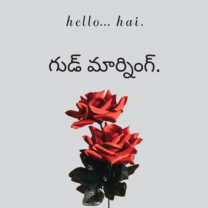 🌅శుభోదయం - hello . . . hai . గుడ్ మార్నింగ్ . - ShareChat