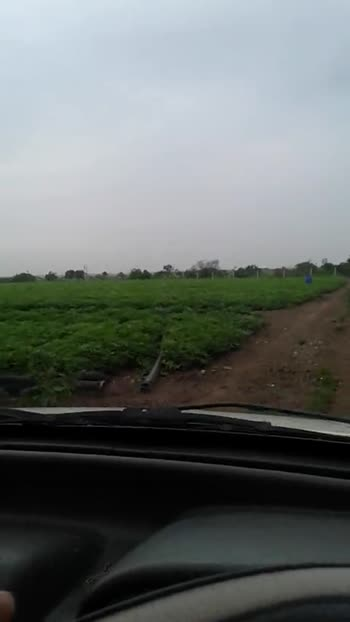my farm - ShareChat
