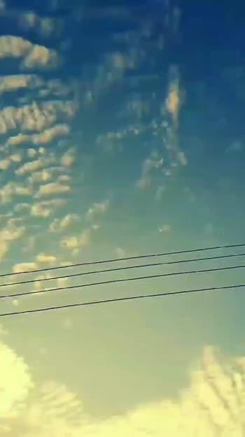 🚶♂️चालतानाचे व्हिडीओ - ShareChat