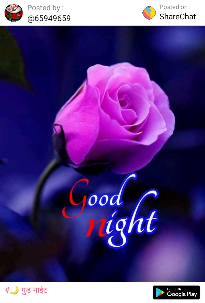 🎶🎵🌓🌓good night🌓 🌓🎵🎶 - Posted by : @ 65949659 Posted on : ShareChat Good ight # ) T5 higa GET IT ON Google Play - ShareChat