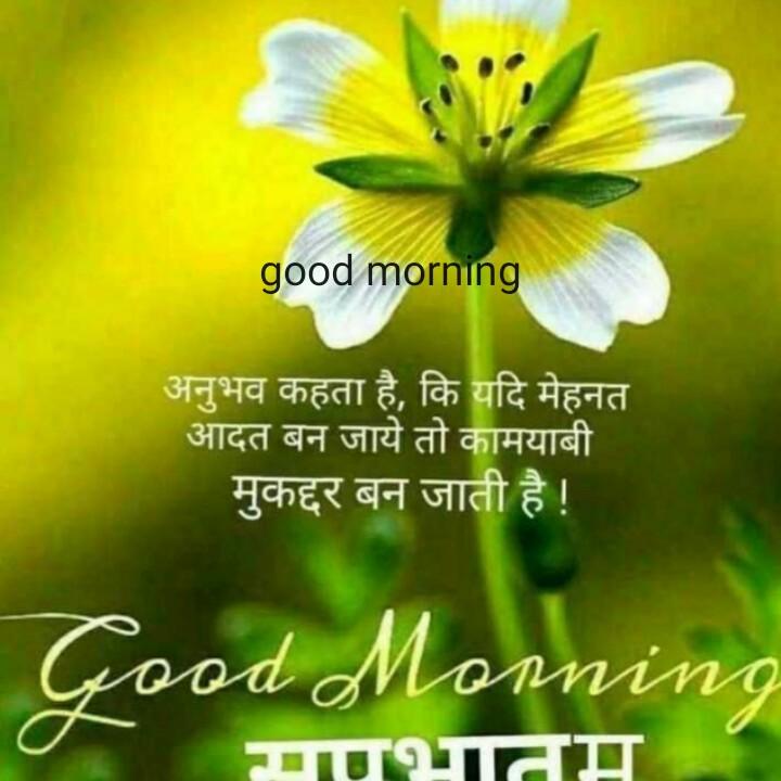 🌞 Good Morning🌞 - good morning अनुभव कहता है , कि यदि मेहनत आदत बन जाये तो कामयाबी मुकद्दर बन जाती है ! Good Morning मपभातम - ShareChat