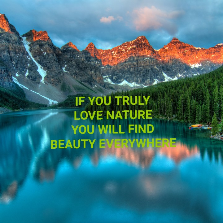 nature - IF YOU TRULY LOVE NATURE YOU WILL FIND BEAUTY EVERYWHERE - ShareChat