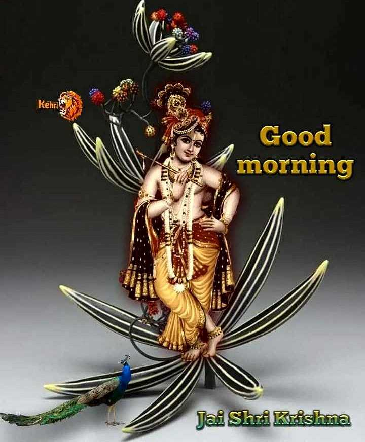 😊 શુભકામનાઓ - Kehri Good morning Jai Shri Krishna - ShareChat