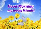 GIFS - Good Morning my lovely friends ! greetings - day . com - ShareChat