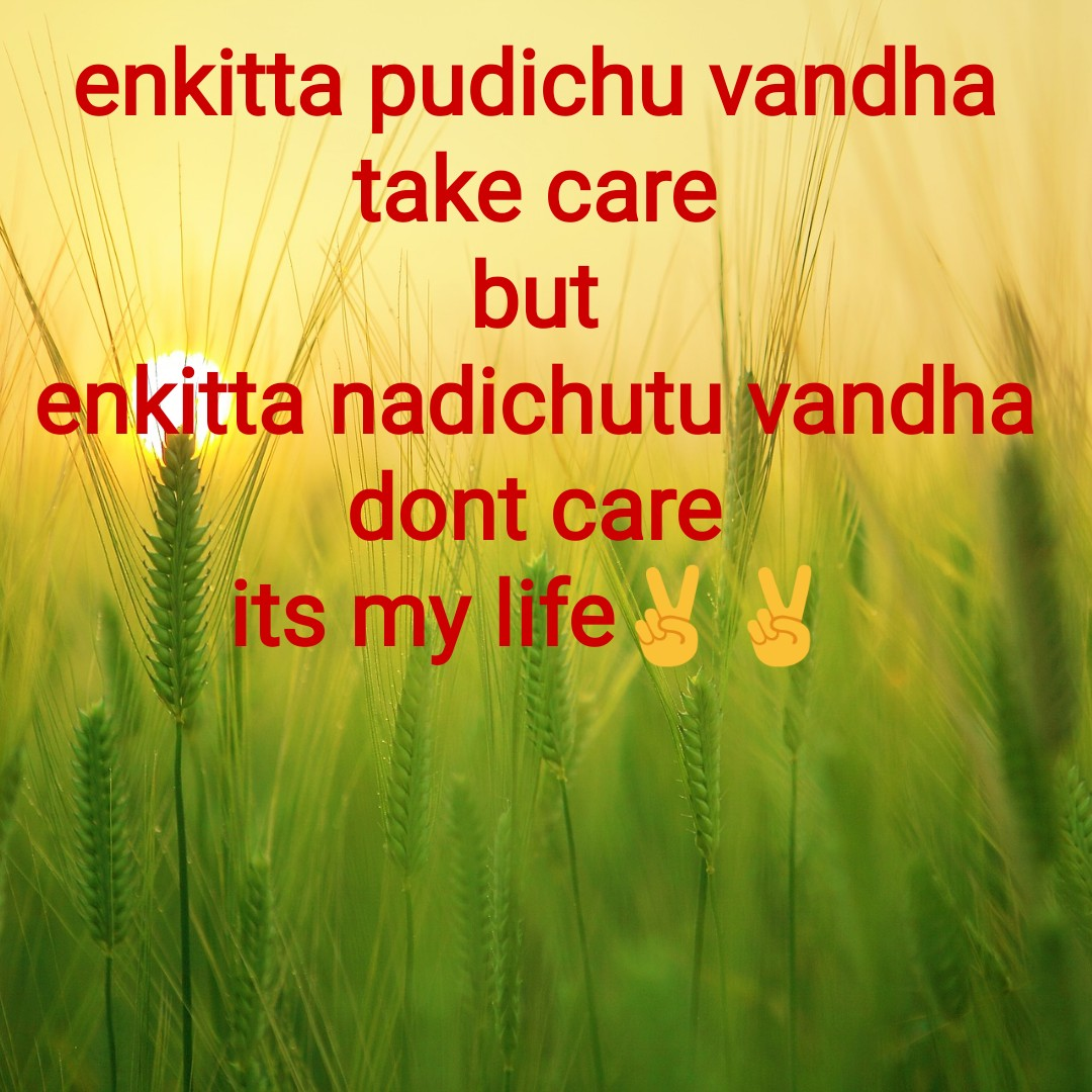 thimiru pudicha ponnu - enkitta pudichu vandha take care but enkitta nadichutu vandha dont care its my life - ShareChat