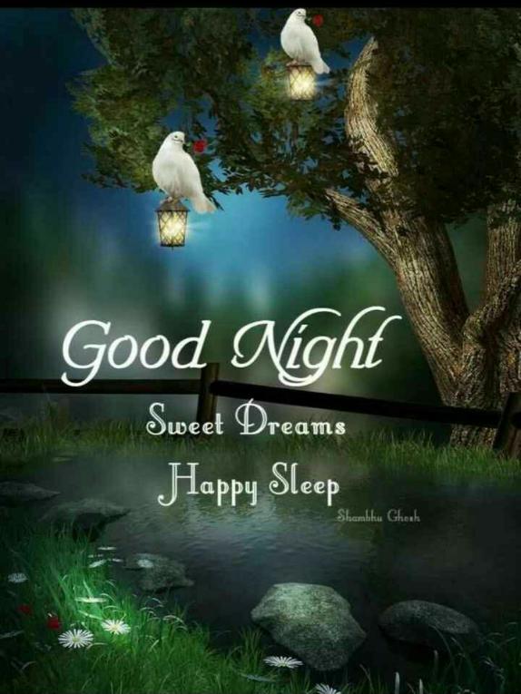 😴శుభరాత్రి - Good Night m e Sweet Dreams Happy Sleep Shambhu Ghosh - ShareChat