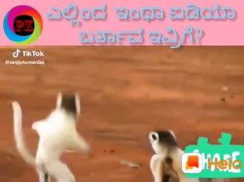 😂funny videos😂 - ShareChat