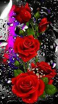 Flowers - ShareChat
