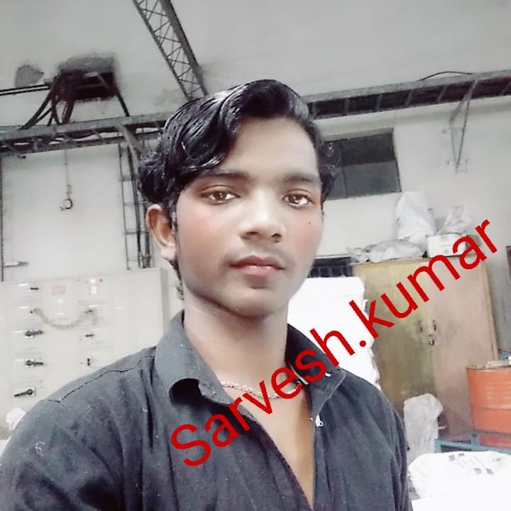 मेरा राजस्थान - Sarvel h . kumar - ShareChat