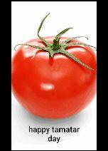 🍅 टमाटर दिवस - happy tamatar day - ShareChat