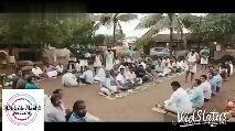 இரை தேடி வந்து மின்சாரம் தாக்கி இறந்த குரங்கு - ShareChat